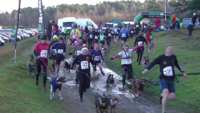 Start of 8km and 16m Brutal canicross off road race Dec 2014