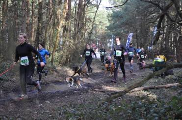 Start of the Human Race MudMan 10km, Canicrossers, Camberley, 7th March 2015