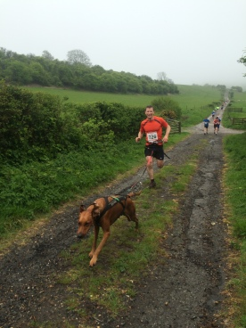 Canicross at the Three Forts Half Marathon 3rd May 2015
