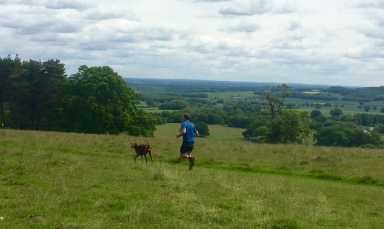 Canicross, Discovery Run Half Marathon, Petworth Park, 2015